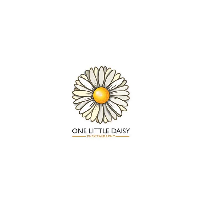 onelittledaisy-the-capture-factory