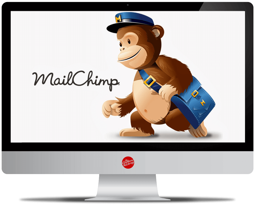 Social Media Management for Business MailChimp